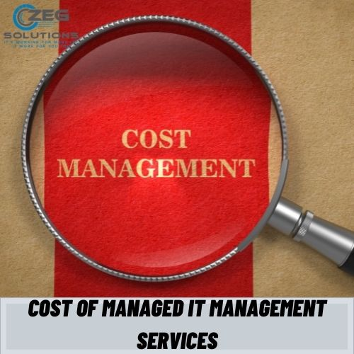 Cost of managed IT management services